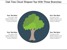 Oak Tree Cloud Shaped Top With Three Branches