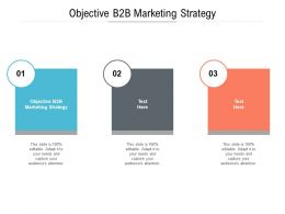 Objective B2B Marketing Strategy Ppt Powerpoint Presentation Infographics Master Slide Cpb