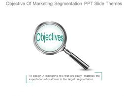 Objective Of Marketing Segmentation Ppt Slide Themes