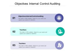 Objectives Internal Control Auditing Ppt Powerpoint Presentation Template Cpb