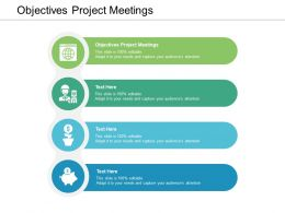Objectives Project Meetings Ppt Powerpoint Presentation Examples Cpb