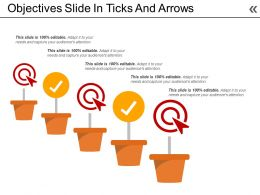 Objectives Slide In Ticks And Arrows