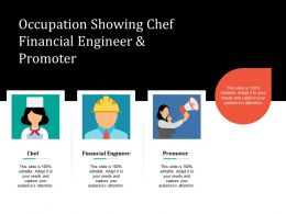 Occupation Showing Chef Financial Engineer And Promoter