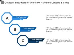 Octagon Illustration For Workflow Numbers Options And Steps