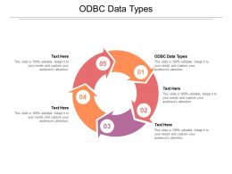ODBC Data Types Ppt Powerpoint Presentation Styles Layout Ideas Cpb