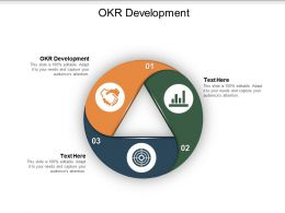 OKR Development Ppt Powerpoint Presentation Infographics Slides Cpb