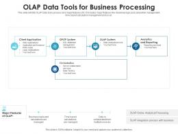 OLAP Data Tools For Business Processing