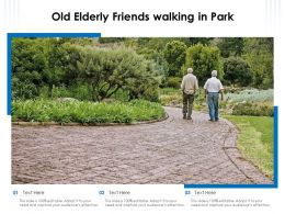 Old Elderly Friends Walking In Park