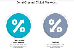 Omni Channel Digital Marketing Ppt Powerpoint Presentation Professional Portrait Cpb
