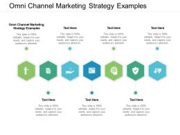 Omni Channel Marketing Strategy Examples Ppt Powerpoint Presentation Styles Background Cpb