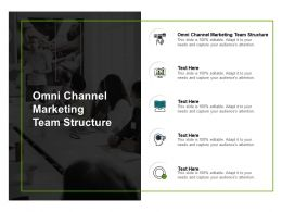 Omni Channel Marketing Team Structure Ppt Powerpoint Presentation Summary Show Cpb