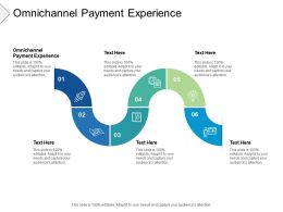 Omnichannel Payment Experience Ppt Powerpoint Presentation Slides Icon Cpb