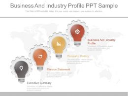 One Business And Industry Profile Ppt Sample