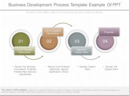 One Business Development Process Template Example Of Ppt