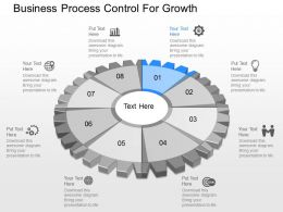 one Business Process Control For Growth Powerpoint Template