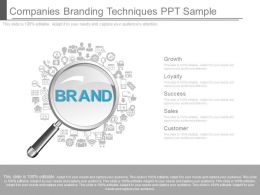 One Companies Branding Techniques Ppt Sample