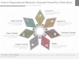 One Culture Organizational Behavior Example Powerpoint Slide Show