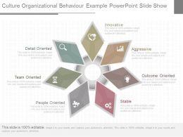 One Culture Organizational Behavior Example Powerpoint Slide Show