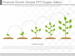 One Financial Growth Sample Ppt Images Gallery