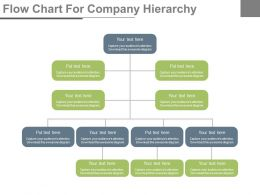 one Flow Chart For Company Hierarchy Flat Powerpoint Design