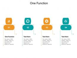 One Function Ppt Powerpoint Presentation Ideas Slide Cpb