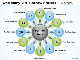 One Many Circle Arrow Process 12 Stages 7