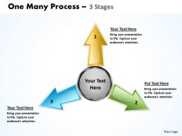 One Many Process 3 Step 13