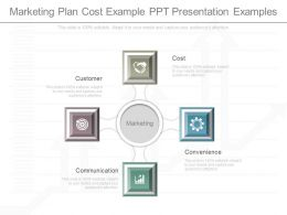 One Marketing Plan Cost Example Ppt Presentation Examples