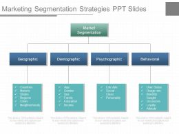 one_marketing_segmentation_strategies_ppt_slides_Slide01