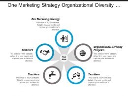 One Marketing Strategy Organizational Diversity Program Succession Program Cpb