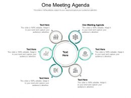 One Meeting Agenda Ppt Powerpoint Presentation Icon Example Introduction Cpb