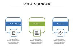 One On One Meeting Ppt Powerpoint Presentation Styles Format Cpb