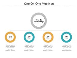 One On One Meetings Ppt Powerpoint Presentation Ideas Sample Cpb