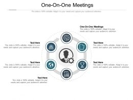 One On One Meetings Ppt Powerpoint Presentation Professional Layout Cpb