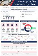 One Page 1 Day Productivity Sheet Presentation Report Infographic PPT PDF Document