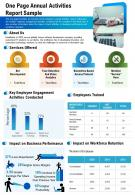 One Page Annual Activities Report Sample Presentation Report Infographic PPT PDF Document