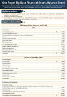 One Page Big Data Financial Balance Sheet Presentation Report Infographic PPT PDF Document