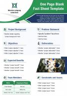 One Page Blank Fact Sheet Template Presentation Report PPT PDF Document