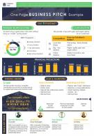 One Page Business Pitch Example Presentation Report Infographic PPT PDF Document
