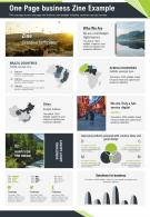 One Page Business Zine Example Presentation Report Infographic PPT PDF Document