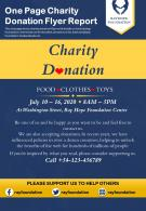 One Page Charity Donation Flyer Report Presentation Report Infographic PPT PDF Document
