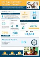 One Page Community Fact Sheet Example Presentation Report Infographic PPT PDF Document