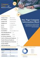 One Page Company Information Sheet Presentation Report Infographic PPT PDF Document