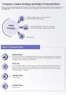 One Page Companys Sales Strategy And Major Financial Risks Presentation Report Infographic PPT PDF Document