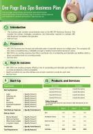 One Page Day Spa Business Plan Presentation Report Infographic PPT PDF Document