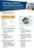 One Page Example Of Financial Aid Fact Sheet Presentation Report Infographic PPT PDF Document