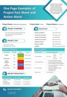 One Page Examples Of Project Fact Sheet And Action Alerts Infographic PPT PDF Document