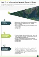 One Page How Firm Is Managing Several Financial Risks Infographic PPT PDF Document