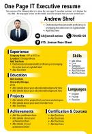 One Page IT Executive Resume Presentation Report Infographic PPT PDF Document