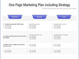 One Page Marketing Plan Including Strategy